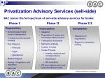 privatization advisory services sell side