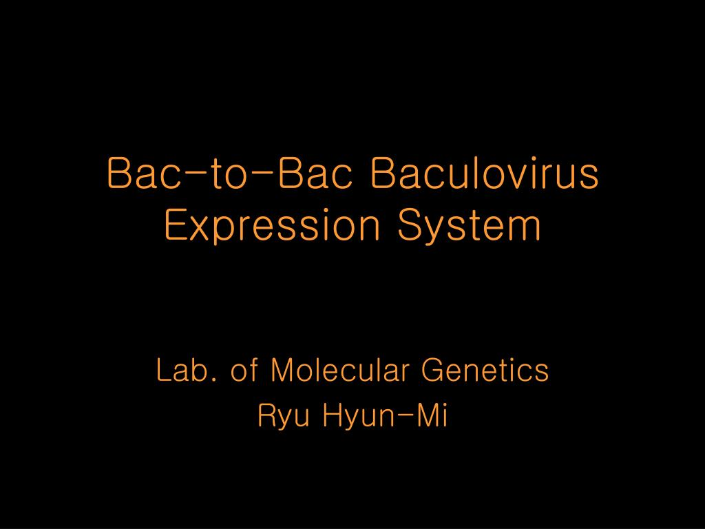 bac to bac baculovirus expression system l.