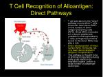 t cell recognition of alloantigen direct pathways