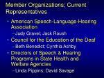 member organizations current representatives3