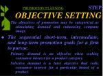 promotion planning step objective setting