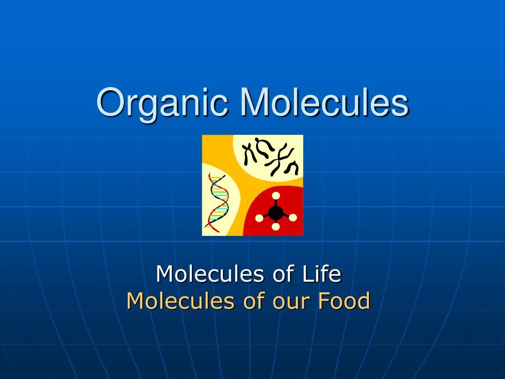 organic molecules l.