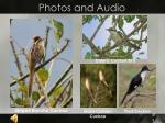 photos and audio