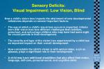 sensory deficits visual impairment low vision blind
