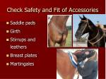 check safety and fit of accessories