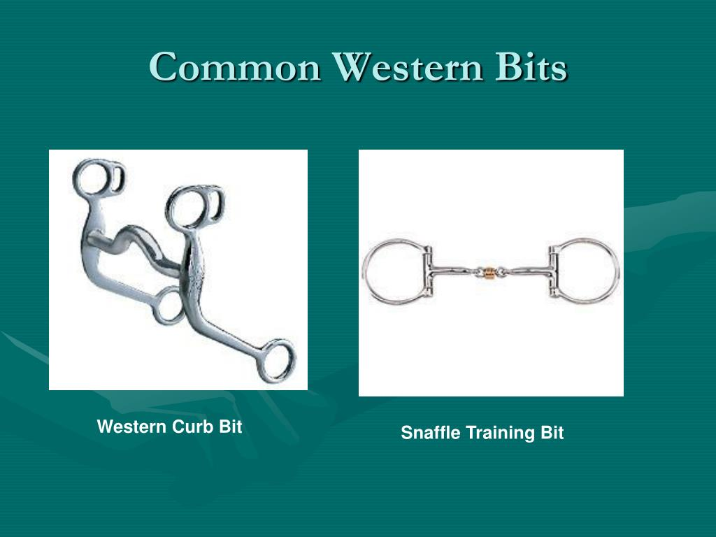 Common Western Bits