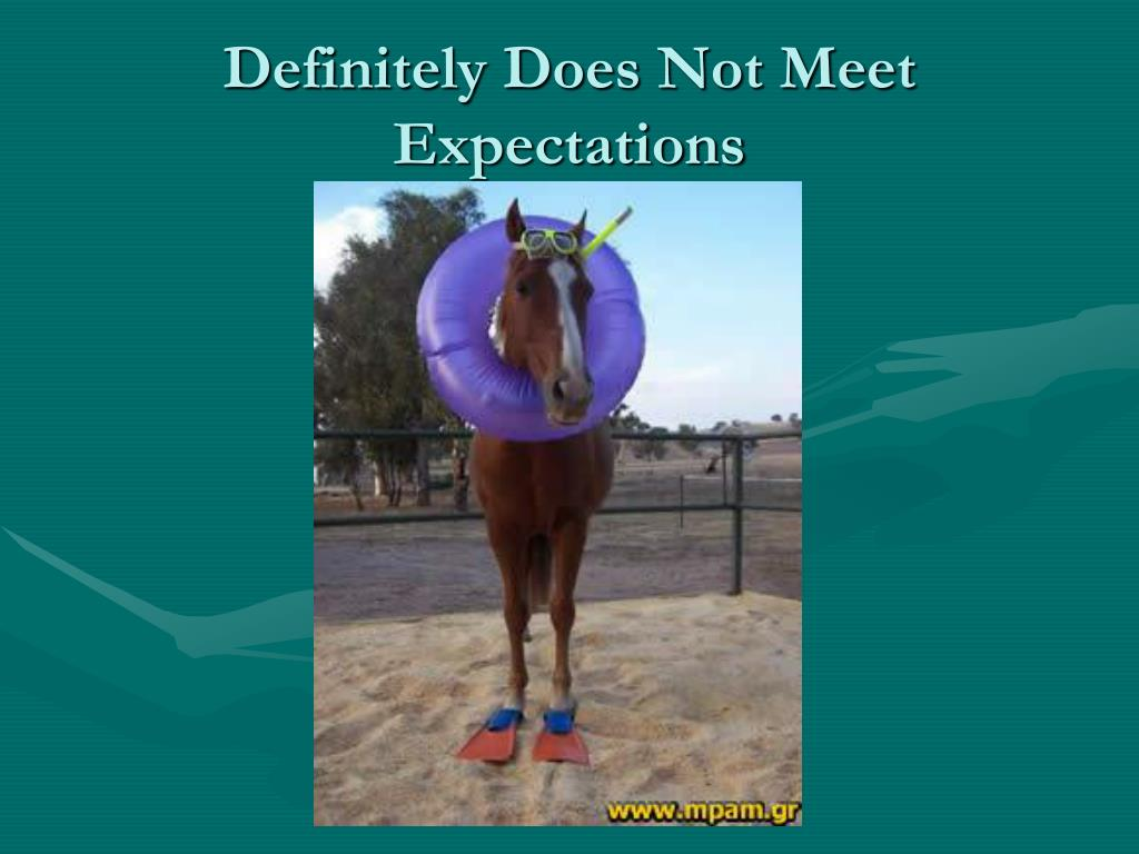 Definitely Does Not Meet Expectations