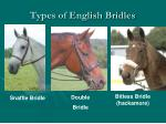 types of english bridles