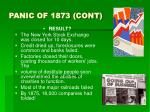 panic of 1873 cont