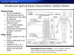 american spinal injury association asia exam