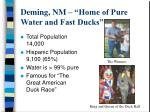 deming nm home of pure water and fast ducks