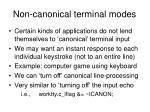non canonical terminal modes