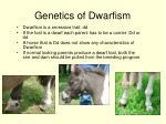 genetics of dwarfism