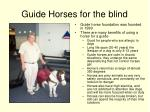 guide horses for the blind