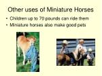 other uses of miniature horses