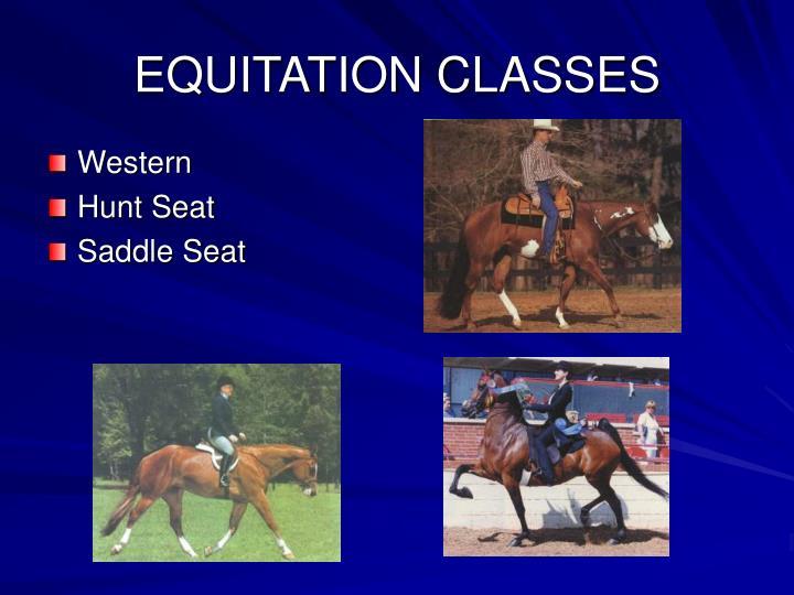 EQUITATION CLASSES