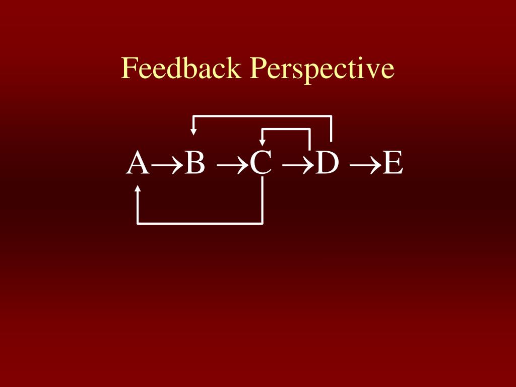 Feedback Perspective