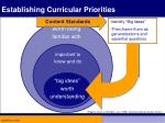 establishing curricular priorities27
