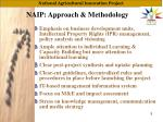 naip approach methodology