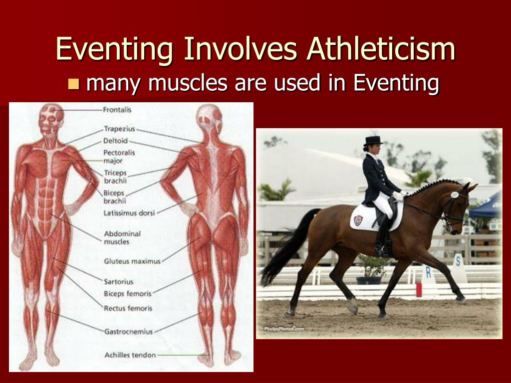 Eventing Involves Athleticism