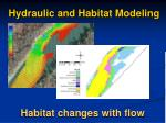 hydraulic and habitat modeling