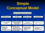 simple conceptual model