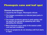 phomopsis cane and leaf spot2