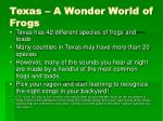 texas a wonder world of frogs