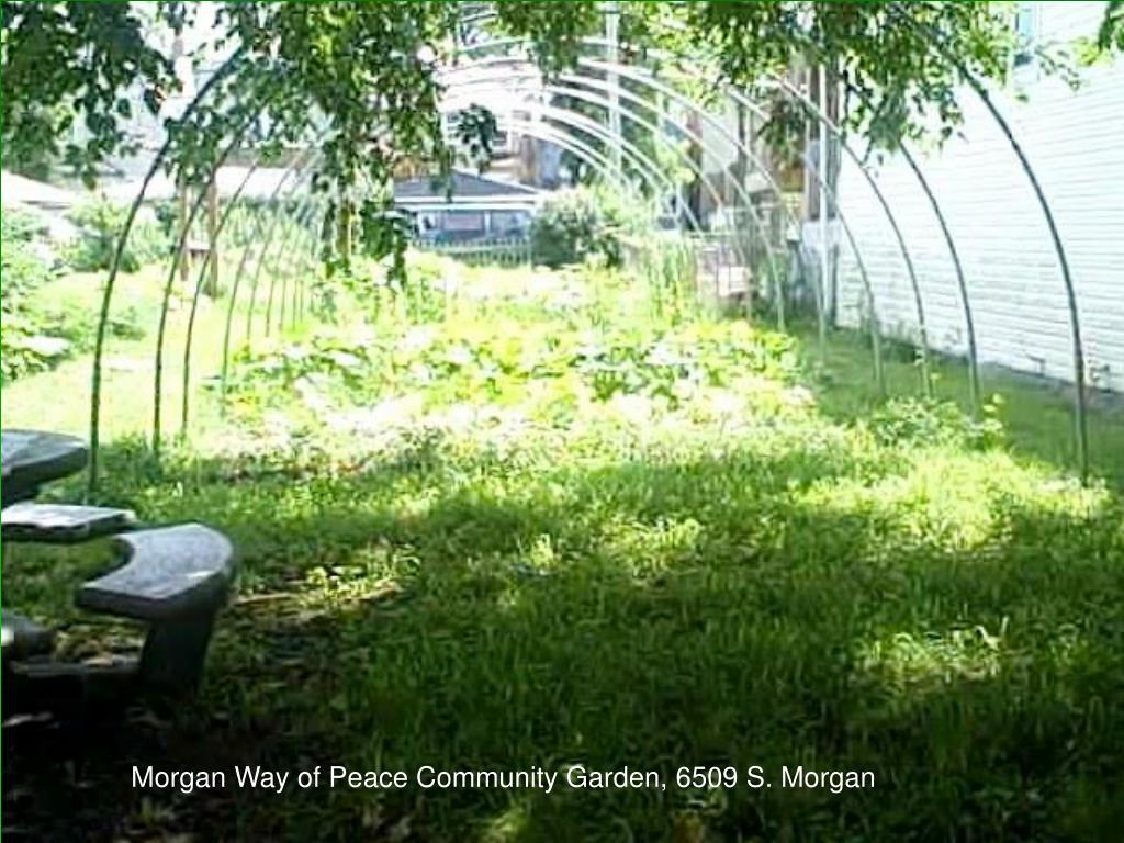 Morgan Way of Peace Community Garden, 6509 S. Morgan