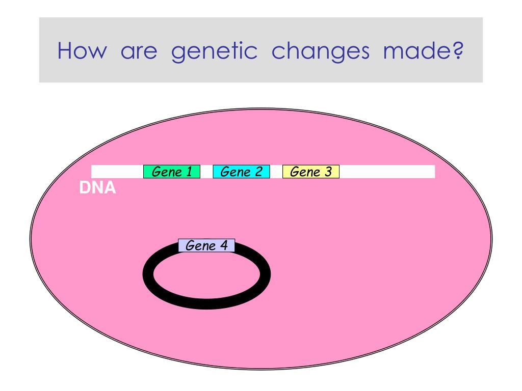 Gene 4