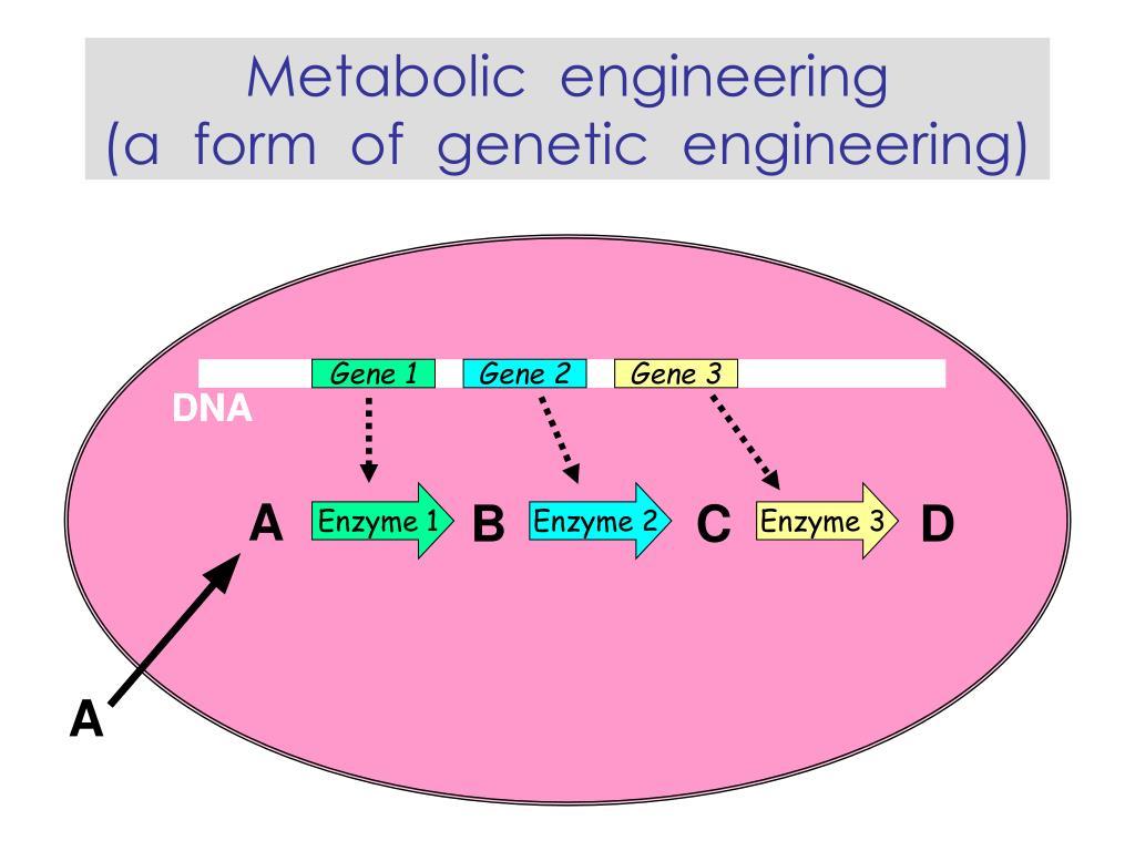 Gene 1