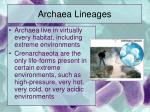 archaea lineages