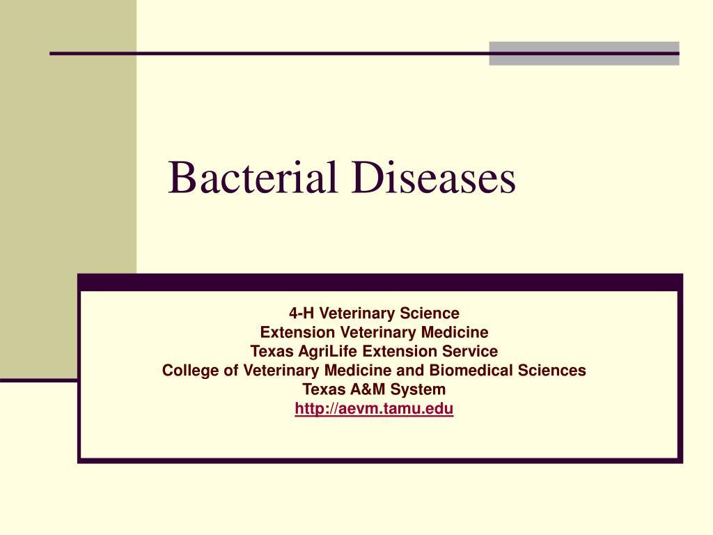 bacterial diseases l.