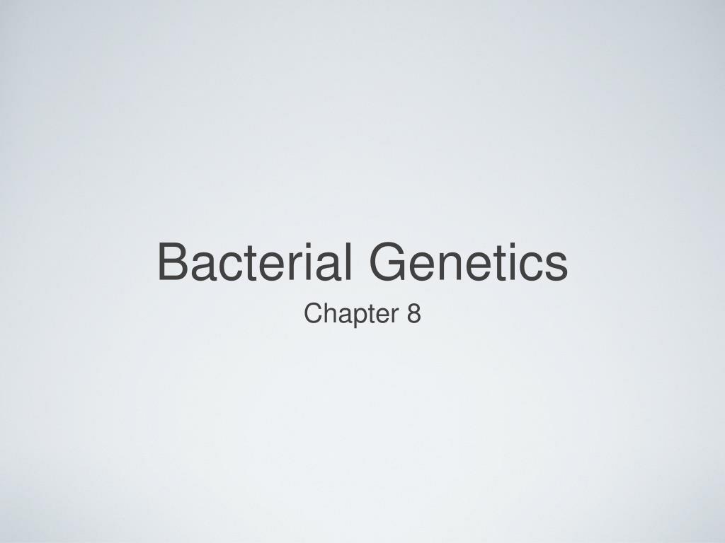 bacterial genetics l.