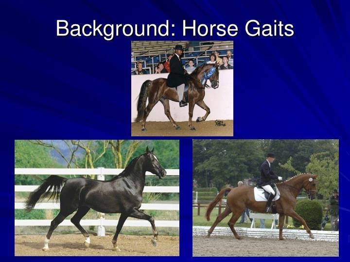 Background horse gaits
