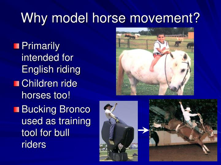 Why model horse movement