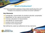 what is ecotourism