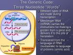 the genetic code three nucleotide words
