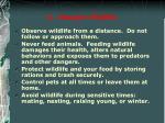 6 respect wildlife