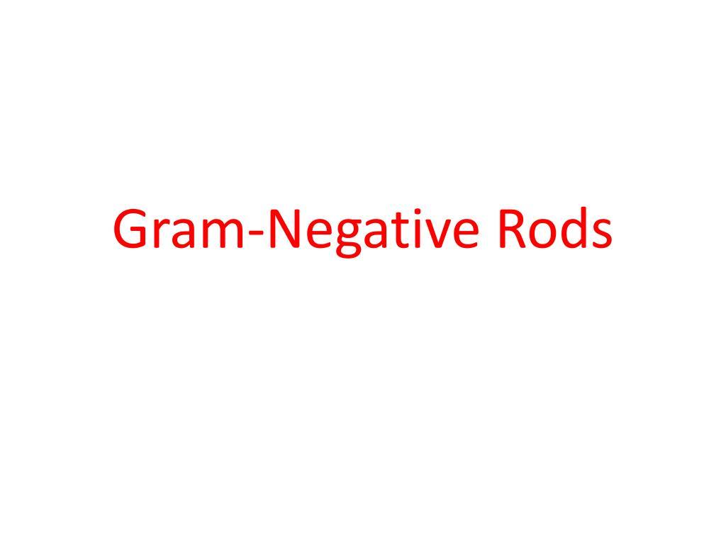 gram negative rods l.