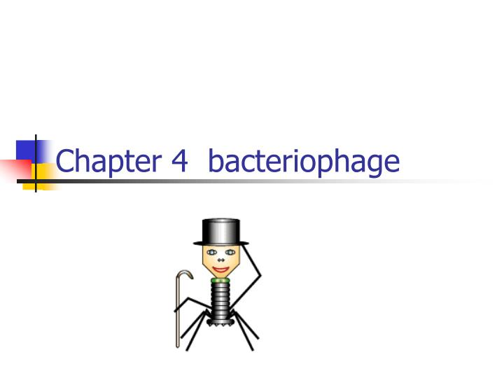 chapter 4 bacteriophage n.