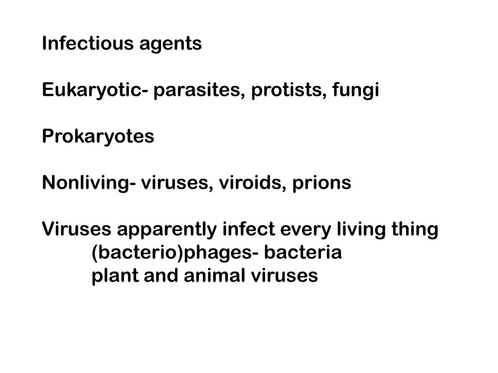?the difference between bacteria, viruses, fungi and parasites essay What is the difference between bacteria and fungi • the main difference between bacteria and fungi is bacteria are prokaryotes whereas fungi are eukaryotes.