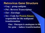 retrovirus gene structure