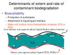 determinants of extent and rate of contaminant biodegradation19