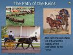 the path of the reins