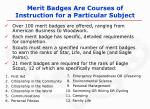 merit badges are courses of instruction for a particular subject