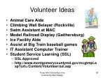 volunteer ideas