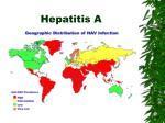 hepatitis a46