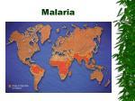 malaria72