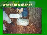 what s in a cache